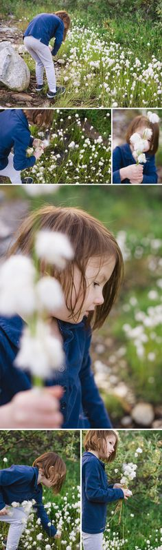I will dance in the meadows, wade through the streams, play in the mud and laugh with my children... little girl picking flowers in Hatchers Pass, Wasilla, Alaska