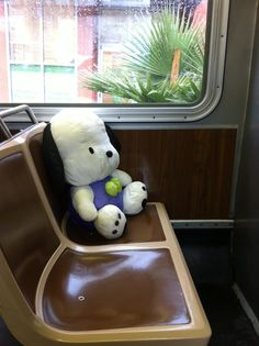 """Steve sent us this urgent dispatch from the Behold: stuffed dog: Pochacco, to be exact. And… …per Steve, """"unattended plastic yellow candy bucket, tot clothes, and mini… Yellow Candy, Pochacco, Rilakkuma, More Cute, Sweet Memories, Sanrio, Plushies, San Francisco, My Favorite Things"""