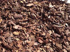 Usos y beneficios de la corteza de pino - http://www.jardineriaon.com/usos-y-beneficios-de-la-corteza-de-pino.html #plantas