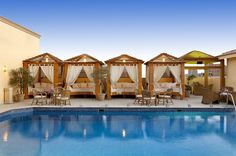 Barcelo Cairo Pyramids - Hotels.com - Hotel rooms with reviews. Discounts and Deals on 85,000 hotels worldwide