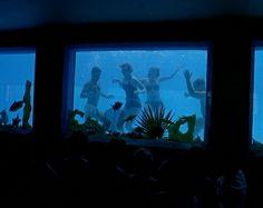 Bognor Regis pool - underwater viewing pane