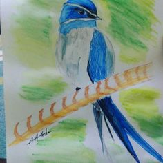 Good morning #watercolor #pird #drawing #goodmorning #art #drawings #painting #paint