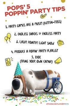 The Secret Life Of Pets - Funny Pictures And Quotes. Kitten toss game!