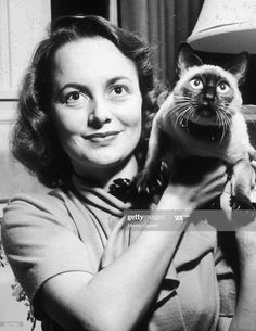Headshot of American actor Olivia de Havilland holding her Siamese cat, Chauncey, at home in Los Angeles, California. Get premium, high resolution news photos at Getty Images Olivia De Havilland, Old Hollywood Movies, Classic Hollywood, Hollywood Actresses, I Love Cats, Cool Cats, Celebrities With Cats, Celebs, Son Chat