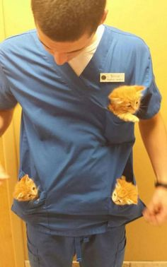 Perks of working at the animal hospital