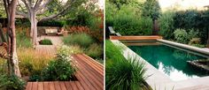 Love the colors of all the native grasses, plus the Ipe wood decking/pathway and, or course, that pool! Design by Rob Steiner Gardens.