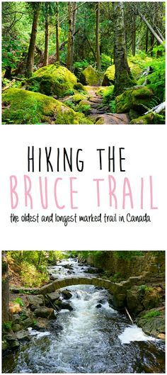 I've hiked this trail near Tobermory---AMAZING HIKE! Hiking the Bruce Trail: Limehouse Conservation Area, Devil's Pulpit, Rattlesnake Point Thru Hiking, Camping And Hiking, Hiking Trails, Backpacking Tips, Hiking Usa, Backpacking Canada, Camping 101, Oh The Places You'll Go, Places To Travel