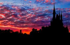 It Really is a Magic Kingdom by JNad, via Flickr