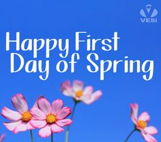 Happy First Day of Spring from VESi