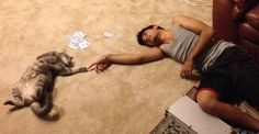 funny cat and man