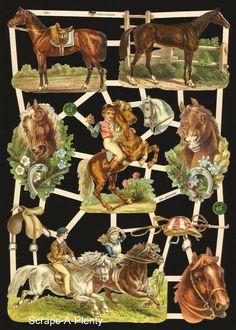 German Victorian Style Embossed Scrap Die Cut - Stunning Horses WOW    EF7401