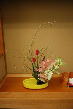 Arrangement for Spring | Flickr : partage de photos !