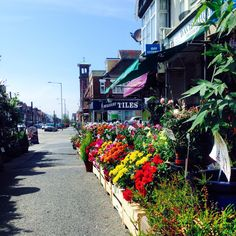 Portland Road, Hove, where LTC is located. Spring time flowers at the local florist shop