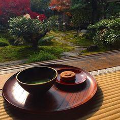 Чаепитие в японском саду #мидокоро #midokoro #tea #greentea #japanesetea #чай #чайчпй #маття #матча #чаепитие #Киото #Чекаев #Япония