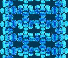 Suga Lane Standard Blue