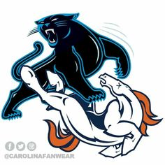 Pounding those Broncos Panther Nation, Home Team, Sport Football, Fantasy Football, Carolina Panthers, Denver Broncos, South Carolina, Super Bowl, Tennessee