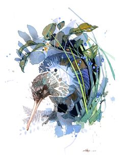 Official Rachel Walker Page. New Zealand watercolour, spray paint, pen and ink artist creating splashy celebrations of native and rare animals. Watercolor And Ink, Watercolor Paintings, Watercolours, Watercolor Trees, Watercolor Portraits, Watercolor Landscape, Abstract Paintings, Rachel Walker, Street Art