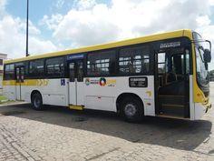 SÉRGIO JOSÉ- ÔNIBUS ALAGOAS: Empresas de Maceió Reformam ônibus com Nova Identi...