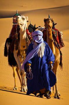 Camel driver walking in the desert, Dubai.