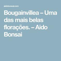 Bougainvillea – Uma das mais belas florações. – Aido Bonsai