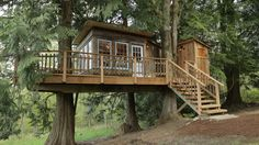 Lolly's Treehouse