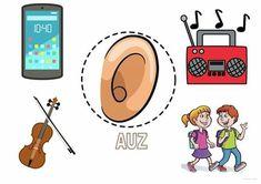 Senses Preschool, Body Preschool, Senses Activities, Dinosaurs Preschool, Sorting Activities, Preschool Worksheets, Preschool Activities, Kindergarten Learning, Kids Learning