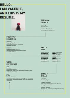 Resume by Valerie Ng, via Behance