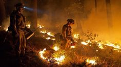 Firefighters use drip torches to set a controlled burn to create a safe zone around homes close to the King fire near Pollock Pines, Calif. Images Of California, Northern California, Pollock Pines, El Dorado County, Nbc Nightly News, California Wildfires, New City, Nbc News, The Washington Post