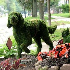 garden topiary--this would freak the dogs out.  ha.