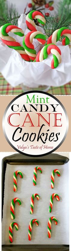 These Mint Candy Cane Cookies are so easy and fun to make. Very little ingredients go into them, but they taste and look amazing. Kids say they look like ornaments, and we should decorate a Christmas tree with them.