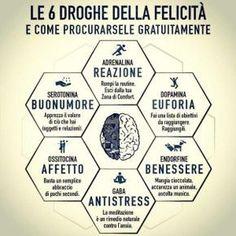 """""""Le 6 Droghe della felicità – E come procurarsele gratuitamente"""""""