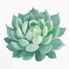Succulent Print Succulent Painting Succulent by BirchBliss on Etsy
