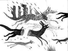 marion jdanoff wolf
