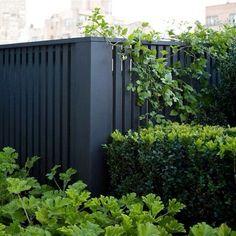 black fence