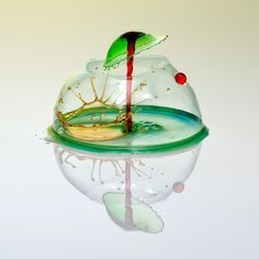 Markus Reugels has elevated a hobby into an obsession, documenting the fluid poses of colliding drops of water.
