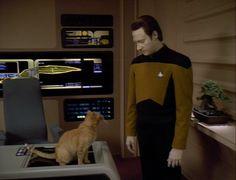 Data and Spot (Star Trek The Next Generation)