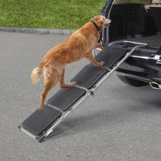 Guardian Gear Portable Pet Ramp Ramp Supports Pets Up To 150 Pounds and Folds Down for Transporting.Anti-Slip Surface – The outside of each progression incorporates an enemy of slide material so your puppies won't slip going here and there the steps Pet Ramp, Pet Steps, Dog Carrier, Dog Paws, Dog Supplies, Cool Gadgets, Dog Grooming, Dog Training, Autos