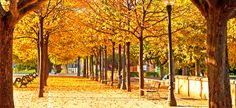 Seasons Hospice & Palliative Care engenders hope in the lives of its patients and their family members. Weather Seasons, Hospice, Autumn Fall, Sidewalk, Country Roads, Pictures, Life, Photos, Side Walkway