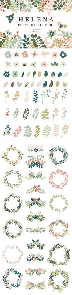 Helena -Flowers Vectors by Cliche Graphique on Creative Market - Aquarell - Watercolor Flowers, Watercolor Art, Drawing Flowers, Vine Drawing, Flower Drawings, Floral Drawing, Art Flowers, Illustration Noel, Flower Illustration Pattern