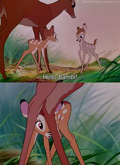 Day 9:favorite couple. Bambi and Faline<3