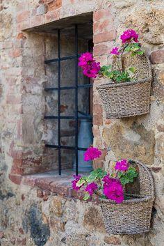 Flores na janela. Itália.