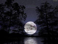 Google Image Result for http://2.bp.blogspot.com/_sD01Cbqoqb0/TDB-q1bEh_I/AAAAAAAAAao/3bKISg16URk/s1600/nature_photography_wallpaper_moonlight_photography.jpg