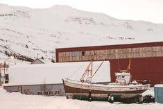 Seydisfjordur town to spot wild reindeer in Iceland   #icelandtrip #wonderful_places #icefishing #exploremore #blogtips