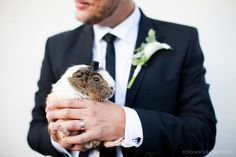 guinea pig with a top hat.... best man?? ha, I am loving this!!