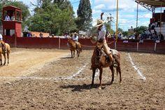 """Torneo Charro """"Los Amigos"""" en SLP ~ Ags Sports"""