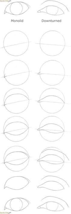 How to draw eye shapes Bonus RFA