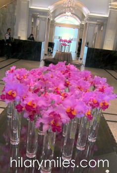 Magenta Cattleya Orchids at The Vancouver Club Magenta Flowers, Cattleya Orchid, Tablescapes, Special Events, Vancouver, Orchids, Glass Vase, Club, Floral