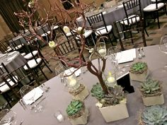 Exquisite Blooms: Manzanita centerpieces