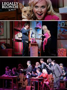Legally Blonde: The Musical [10.12.07, 1.29.09, 4.6.10, 10.13.12 (x2), 10.13.12 (x2)]