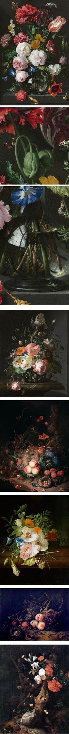 """Rachel Ruysch. linesandcolors: """"Dutch painter Rachel Ruysch, whose life and career straddled the seventeenth and eighteeth centuries, was renowned for her striking still life paintings of flowers, which occasionally featured fruit and crystal glassware. """""""